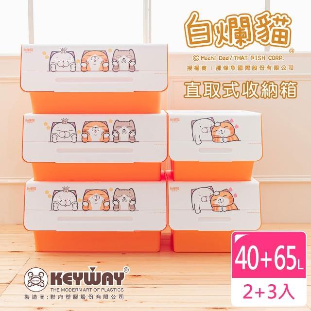 【dayneeds 日需百備】新款白爛貓直取式收納箱 五入 三大二中(塑膠箱/衣物收納/收納箱/置物箱)