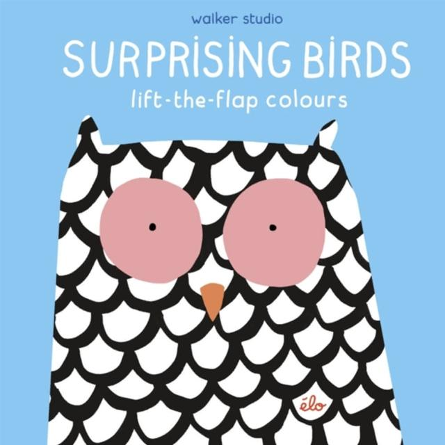 【Song Baby】Surprising Birds:Lift-The-Flap Colours 繽紛的鳥兒(操作書)