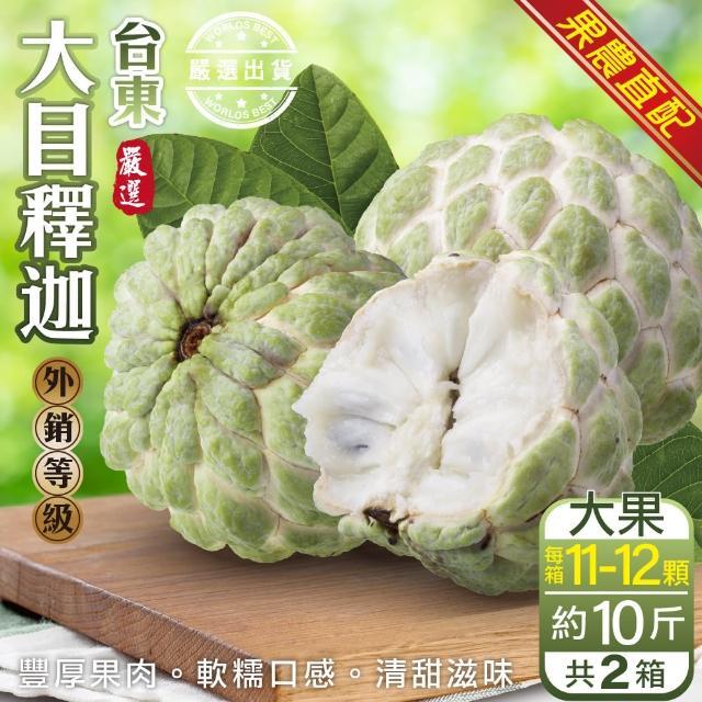 【果農直配x外銷等級】台東大目釋迦 x2箱(原箱8~11入/約10斤)
