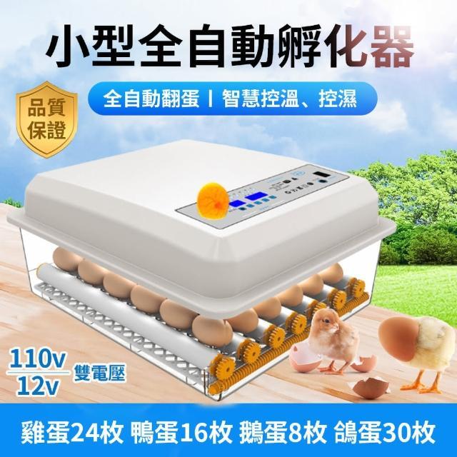 【佳裕】孵化機 全自動孵蛋器 孵化器(24枚蛋孵化器/☆温度控制/家用智能孵化器/小型雞蛋孵化箱)